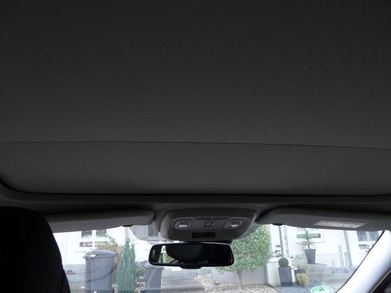 Kadjar im Detail - Panoramaglasdach (Sicht-Paket)