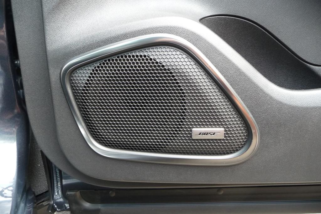 Kadjar im Detail - Lautsprecher Beifahrertür
