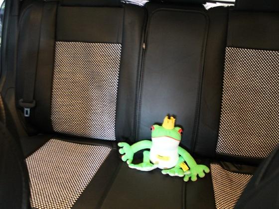 neue Sitzbezüge bei Katja hinten heute eingebaut :)