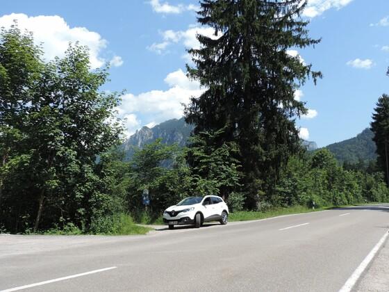 Schloss Neuschwanstein hinterm Baum/Es kann nur eine Schönheit geben